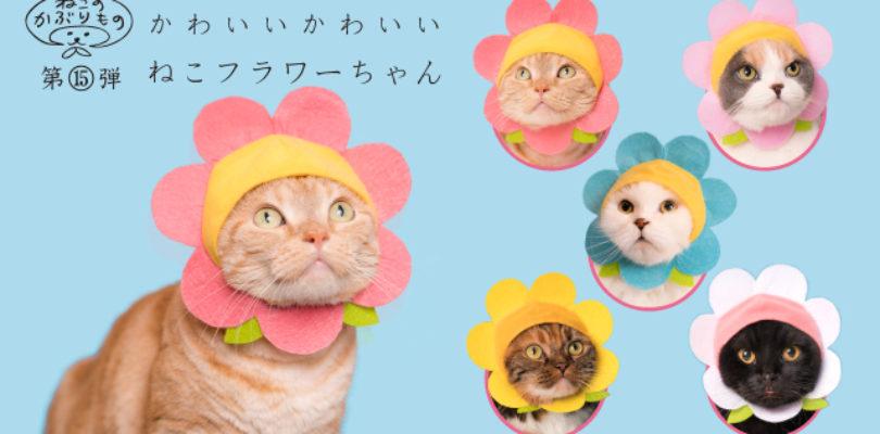 [CURIOSITÀ'] I Choose Meow! Cappellini per gatti ispirati ai Pokemon