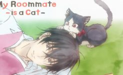 recensione my roommate is a cat