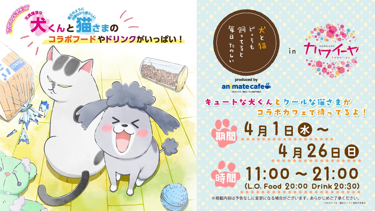 Video promo per Inu to Neko Docchimo Katteru to Mainichi Tanoshii