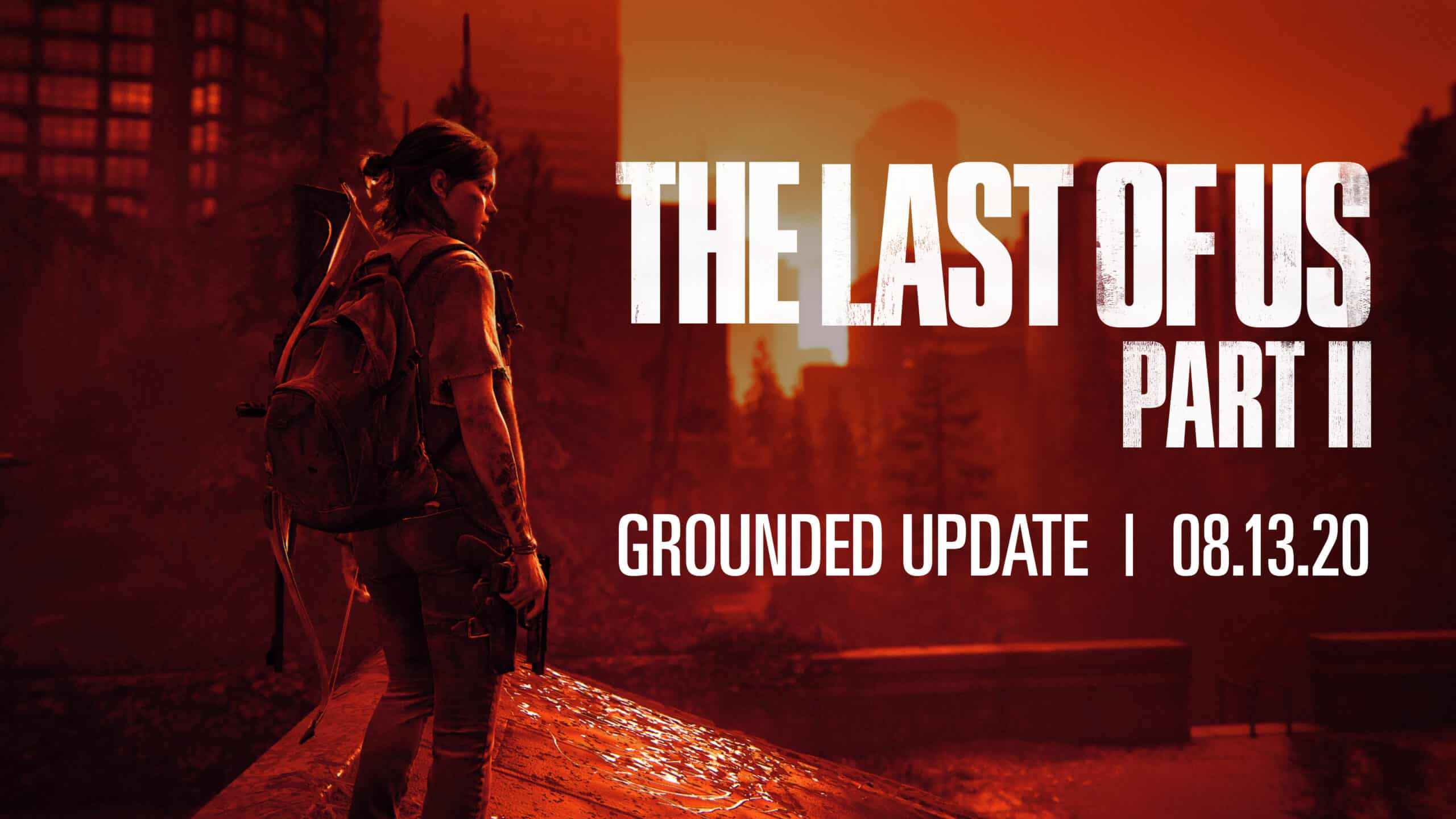 The last of us 2 grounded